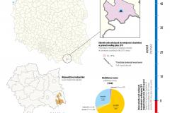 MAPA TYGODNIA: mniejszości etniczne: Łemkowie